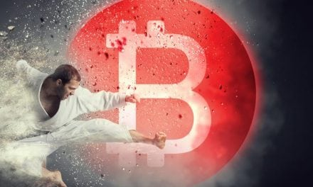 Wendy McElroy: The Jiu-Jitsu of Crypto – Personal Freedom vs Social Change