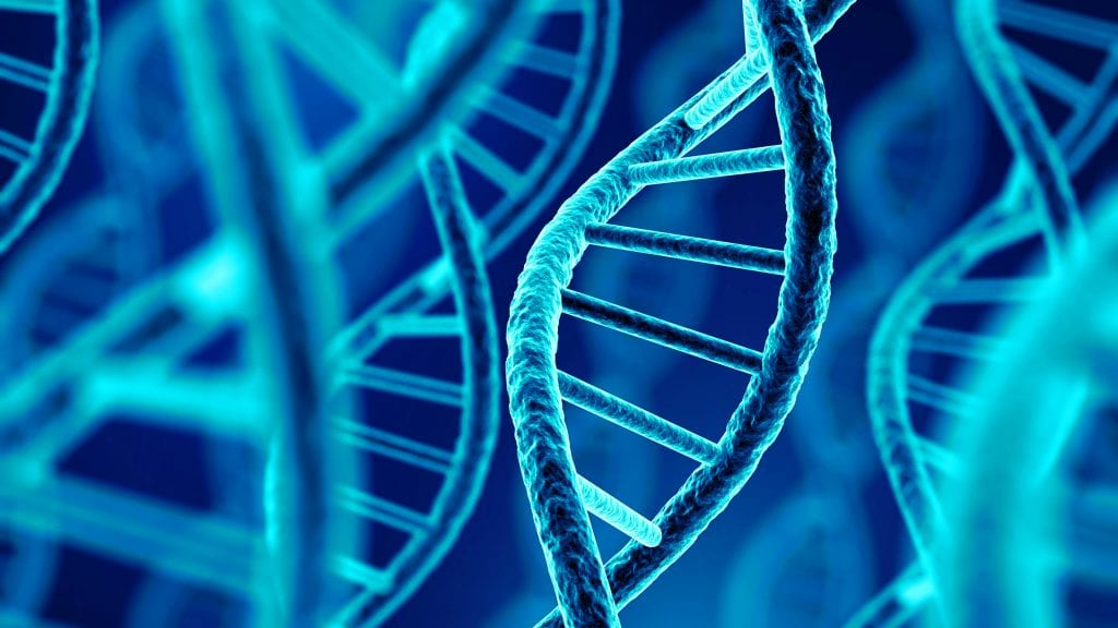 Bitcoin Cold Storage Now Available in DNA