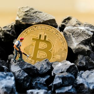 How Crypto Miners Are Being Forced to Adapt to Survive the Bear Market