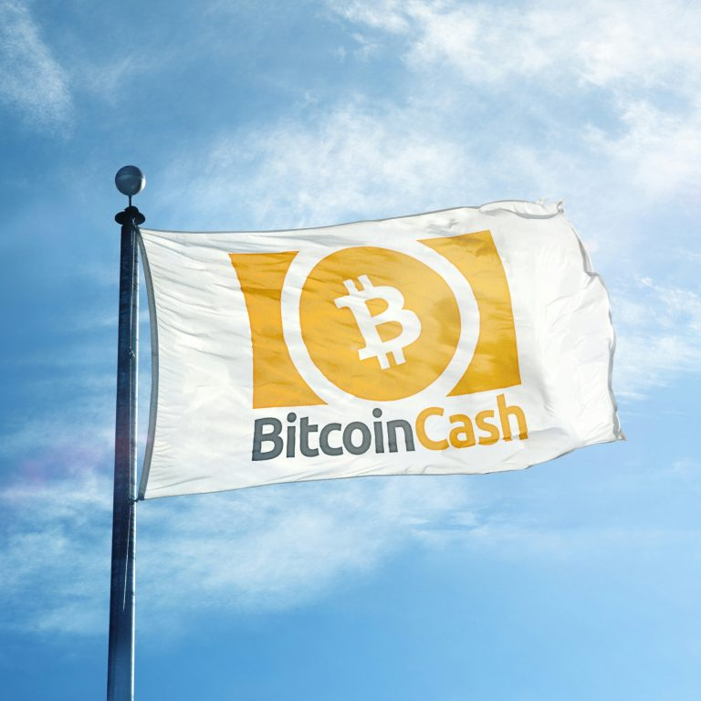 About 945 Retailers Worldwide Now Accept Bitcoin Cash