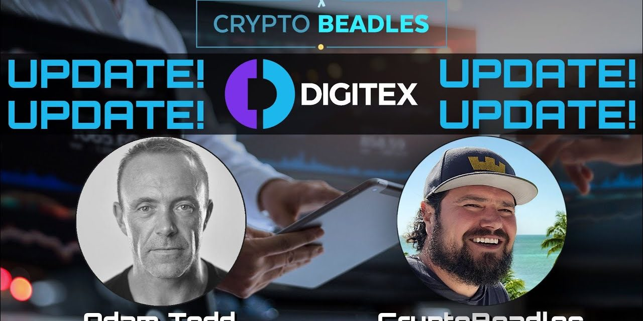 ⎮Digitex⎮DGTX⎮BIG Update and Announcement!⎮Blockchain⎮Crypto⎮