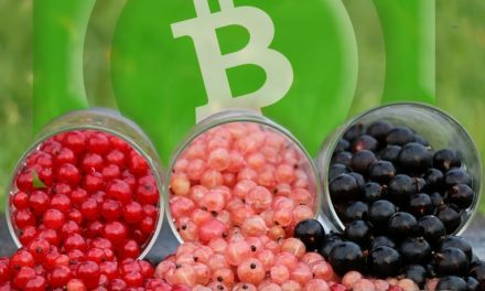 Tokens Built on Bitcoin Cash Are Cheaper to Send Than Those of Rival Networks