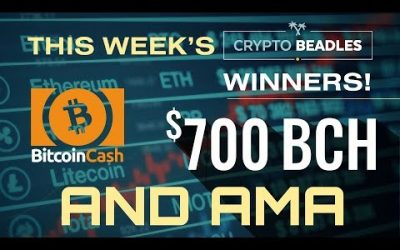 $700 in BCH Giveaway ⎮LIVE⎮Monarch Wallet and BCH Updates! Antminer S9 GIveaway, AMA and more!