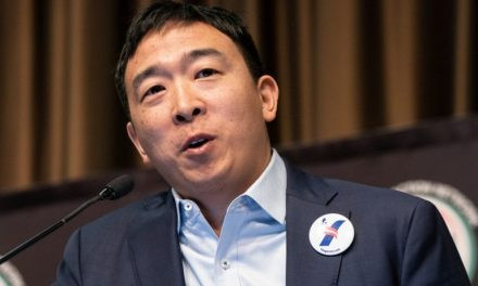 Elon Musk Supports Yang – But Does Andrew Yang Really Support Bitcoin?
