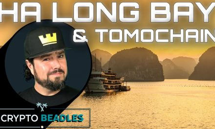 TomoChain Day 2 and incredible sights from Halong Bay Vietnam⎮Crypto⎮Blockchain⎮