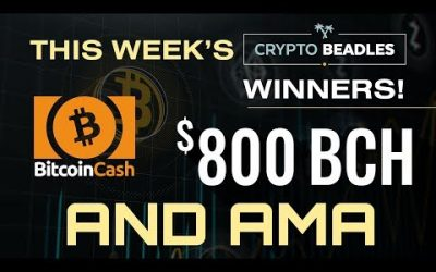 Live $800 BCH Giveaway! Details on $1,000 USD giveaway and More!⎮Blockchain⎮Bitcoin⎮Crypto⎮