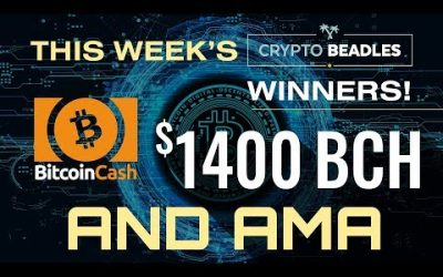 Live $1400 BCH Giveaway! Bitcoin Blockchain Booklet Unveiling and more!
