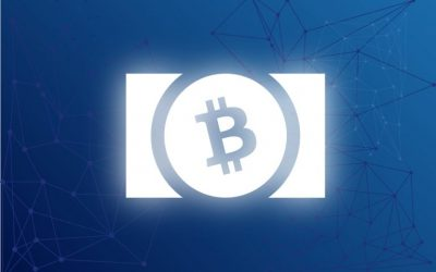 BCH Is An A-Class Crypto for Auditability
