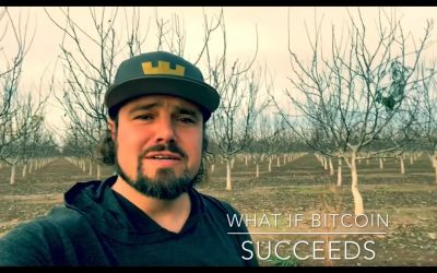 What If Bitcoin Succeeds⎮Crypto⎮Blockchain⎮