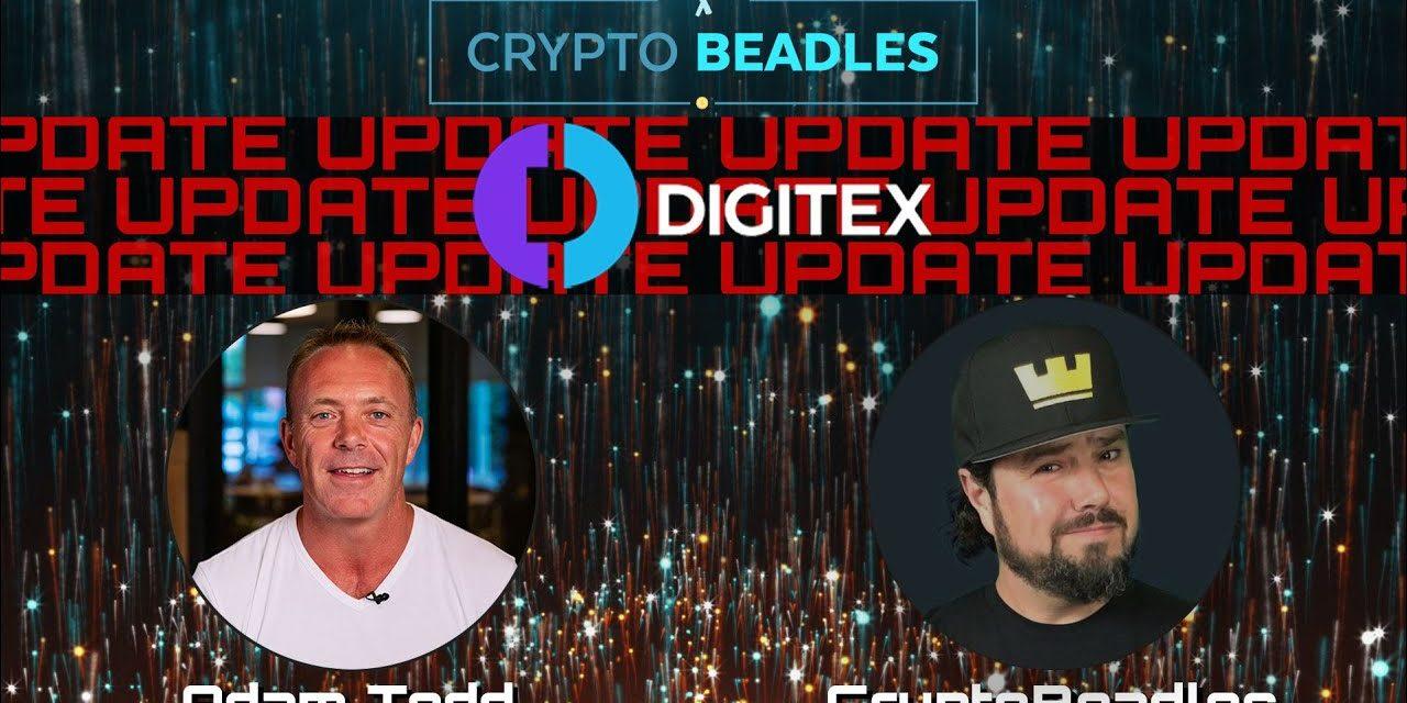 Digitex Futures Update⎮Crypto⎮Exchange⎮Blockchain⎮Bitcoin⎮Adam Todd⎮DGTX⎮
