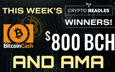 Eight Hundred Dollars in LIVE Giveaways!!! AMA and More!!!⎮Blockchain⎮Bitcoin⎮Crypto⎮