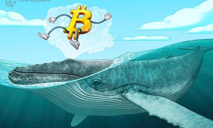 Don't panic? 'Smart money' whales are waiting to buy Bitcoin at $8,800